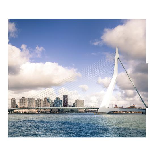 https://reenf.nl/wp-content/uploads/2019/09/Rotterdam-550x550.png